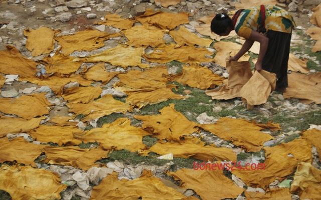 A worker of a tannery industry is working at Hazaribagh in Dhaka on Wednesday.
