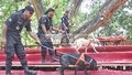 RAB's dog squad at Dhaka's Ramna Park to ensure security ahead of the Pahela Baishakh - the start of the Bengali New Year. Photo: nayan kumar/ bdnews24.com