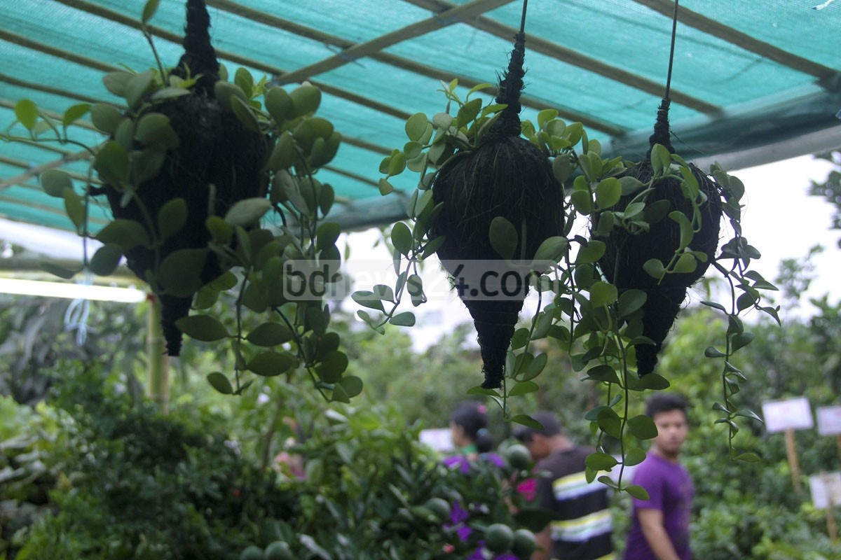 Visitors at the Tree Fair at Sher-e-Bangla Nagar in Dhaka. Photo: asif mahmud ove/ bdnews24.com