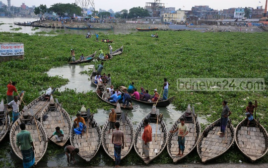 People cross the Buriganga at a slow pace as water hyacinths cover this part of the river near Shoari Ghat on Tuesday. Photo: mustafiz mamun/ bdnews24.com