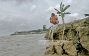 Many have lost everything due to erosion at Munshiganj's Mawa. Photo: tanvir ahammed/ bdnews24.com