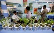 Fourth Agro Bangladesh Expo has started at Bangabandhu International Conference Center (BICC) on Thursday. Photo: asaduzzaman pramanik/ bdnews24.com