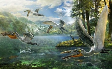 The ecological reconstruction of Ikrandraco avatar is shown in this illustration courtesy of Chuang Zhao. Reuters