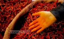 In this factory, rotten red chili was being mixed with fabric paint to make powdered spices. Photo: asaduzzaman pramanik/ bdnews24.com