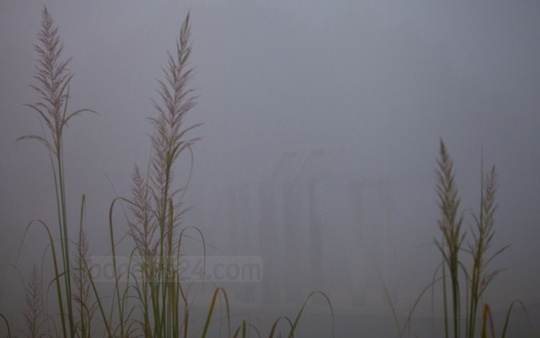 Pall of fog enveloping several places of North Bangladesh even before the advent of winter. Photo was taken recently from Thakurgaon's Ranishonkoil area. Photo: asaduzzaman pramanik/ bdnews24.com