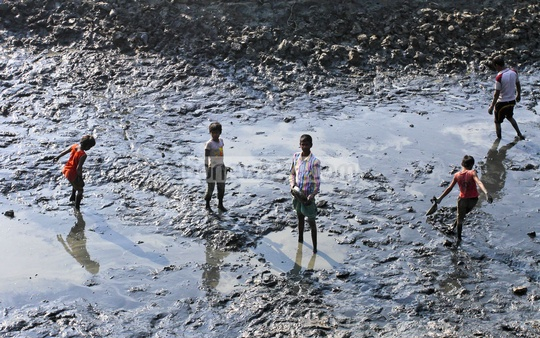 Children catch fish on a dry water body at Srinagar in Munshiganj on Tuesday. Photo: tanvir ahammed/ bdnews24.com