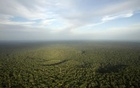 A view is seen from the Amazon Tall Tower Observatory (ATTO) in Sao Sebastiao do Uatuma in the middle of the Amazon forest in Amazonas state January 10, 2015. CREDIT: Reuters