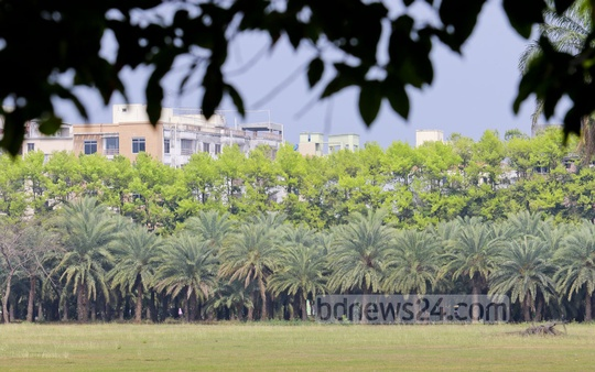 Nature blooms with new leaves on the trees with the advent of Spring. The photo is taken from the capital's Parliament area. Photo: asaduzzaman pramanik/ bdnews24.com