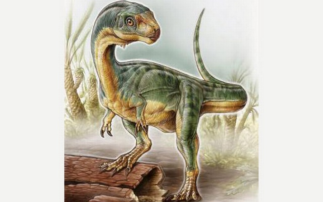 An artist's depiction shows the Chilesaurus diegosuarezi in this undated handout illustration provided by the University of Birmingham in Birmingham, Alabama on April 27, 2015. Reuters