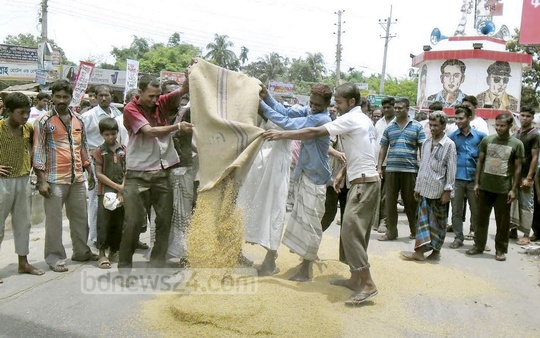 Rangpur farmers demonstrate by spilling paddy on the road on Wednesday, as they demand direct purchase of paddy from them at right prices.