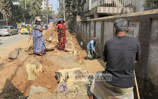 A large number of trees are being felled because of footpath and sewerage construction along Road No. 18 in Sector-3 of Dhaka's Uttara. Photo: asif mahmud ove