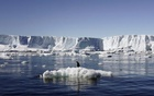 An Adelie penguin stands atop a block of melting ice near the French station at Dumont díUrville in East Antarctica in this January 23, 2010 file photo. Reuters