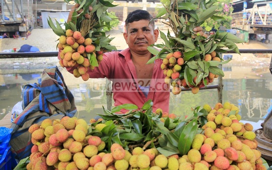 Litchi, a summer fruit that makes a brief seasonal appearance, has arrived in shops. A litchi-seller holds up the fruits at Dhaka's Sadarghat on Thursday. Photo: mostafigur rahman