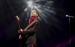 US musician Prince performs on stage at Yas Arena in Yas Island, Abu Dhabi, United Arab Emirates November 14, 2010. Reuters