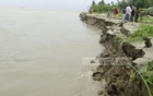 Many business establishments, houses, roads and hundreds of acres of farmland have disappeared into the Padma River in the recent erosion at Shariatpur's Jajira Upazila.