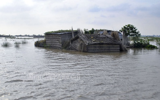 Shoals in Rajshahi are submerged on Sunday following the rise of water in the river Padma.