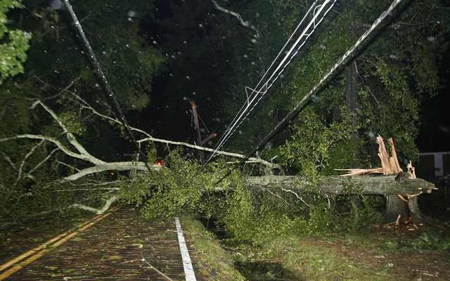 Downed trees and power lines block the road after Hurricane Hermine blows through Tallahassee, Florida September 2, 2016. reuters