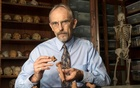 Paleoanthropologist John Kappelman is seen with 3D printouts of Lucy's skeleton illustrating the compressive fractures in her right humerus that she suffered at the time of her death 3.18 million years ago in this image from the University of Texas at Austin, US for release on Nov 30, 2016. Reuters