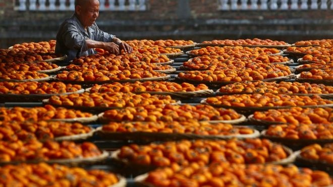 Common in China and many countries across East Asia, the fruit is also gaining popularity in the UK. reuters