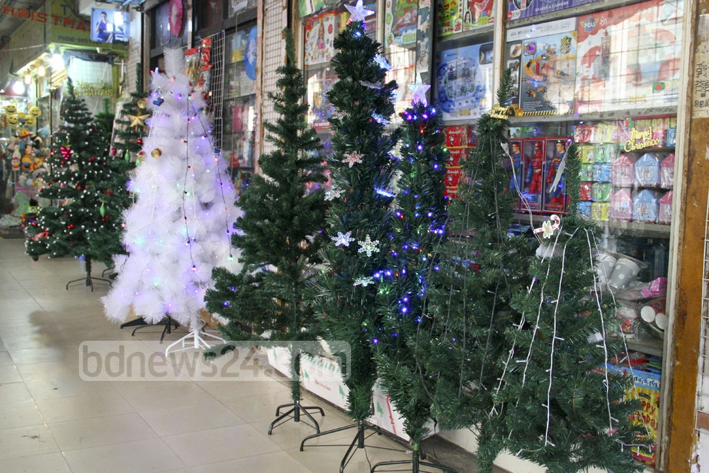 Christmas trees are lined up for sale at Gulshan's DCC Market on Wednesday. Photo: abdul mannan