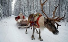Santa Claus rides in his sleigh as he prepares for Christmas in the Arctic Circle near Rovaniemi, Finland December 15, 2016. REUTERS