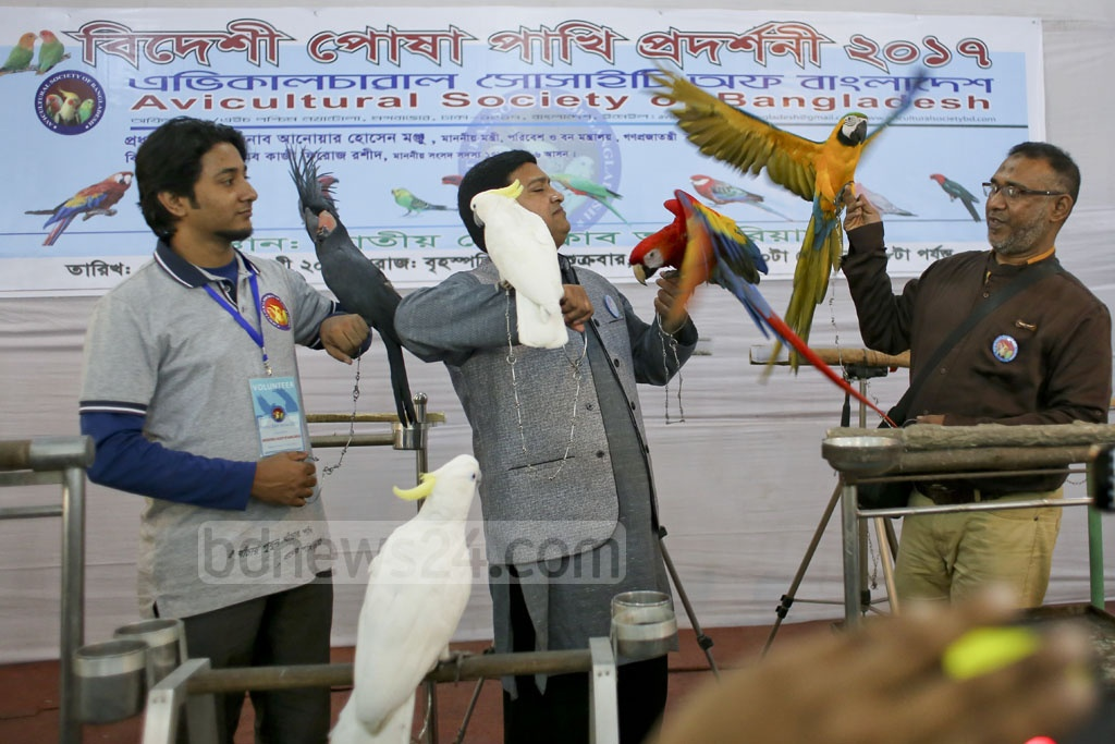 A two-day bird show launched at the National Press Club on Thursday. Photo: asaduzzaman pramanik