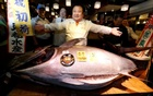 Tuna fetches $614,000 at Tokyo's famed New Year's fish auction
