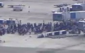 5 killed in Florida airport shooting