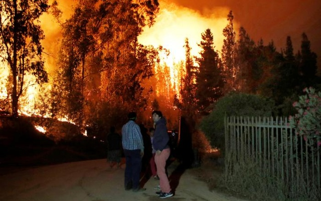 Trees on fire are seen near a house in the town of Hualane, on the outskirts of the Curico city, south Chile. Reuters