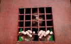 Captive Islamic State militant says mass rapes were 'normal'