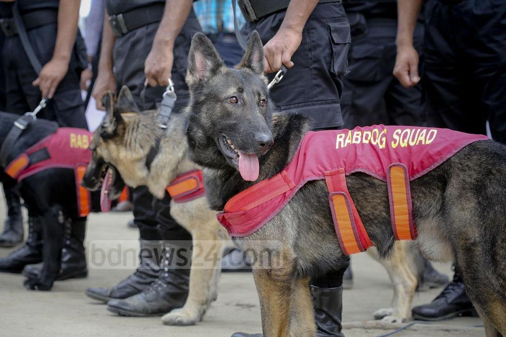 The RAB uses its dog squad to search the Central Shaheed Minar on Monday, before crowds descend on the memorial for International Mother Language Day. Photo: asaduzzaman pramanik