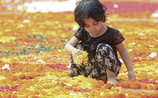 A child plays with flowers used to decorate the Central Shaheed Minar premises in Dhaka on the International Mother Language Day on Tuesday. Photo: abdul mannan