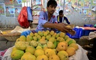 Mangoes imported from India is sold at Tk 90 to 120 per kg at wholesale markets, but the retailers are charging between Tk 150 and 200 per kg. The photo was taken at Kadamtali in Dhaka on Monday. Photo: mostafigur rahman