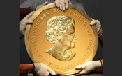 Picture taken in Vienna, Austria on Jun 25, 2010 shows experts of an Austrian art forwarding company holding one of the world's largest gold coins, a 2007 Canadian $ 1,000,000 ''Big Maple Leaf''. An identical coin was stolen from Berlin's Bode Museum on Mar 28. Reuters