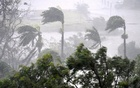 Strong wind and rain from Cyclone Debbie is seen effecting trees at Airlie Beach, located south of the northern Australian city of Townsville, March 28, 2017. Reuters