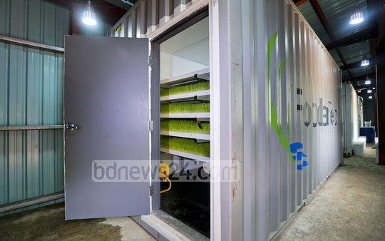 A 200 square feet container with the full hydroponic system of producing 200-225 kg grass daily in it costs Tk 400,000. The price of a 400 square feet container with the capacity to produce 400-440 kg grass daily is Tk 800,000. Photo: asaduzzaman pramanik