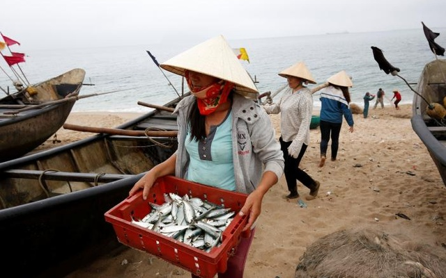 A woman carries fish on the beach of Dong Yen fishing village, which is next to the Formosa factory, in Vietnam's central Ha Tinh province Mar 31, 2017. Reuters