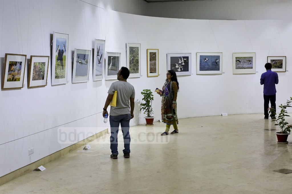 Visitors look at photographs at Bangladesh: The Land of Birds 2017, an exhibition being held at the National Museum in Dhaka on Monday. Photo: asaduzzaman pramanik