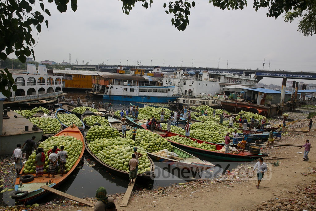 Boats packed with watermelons reach Dhaka's Badamtali terminal, later than usual, increasing supplies. The start of their season was marked by continuous rain that affected their yield. Photo: mostafigur rahman