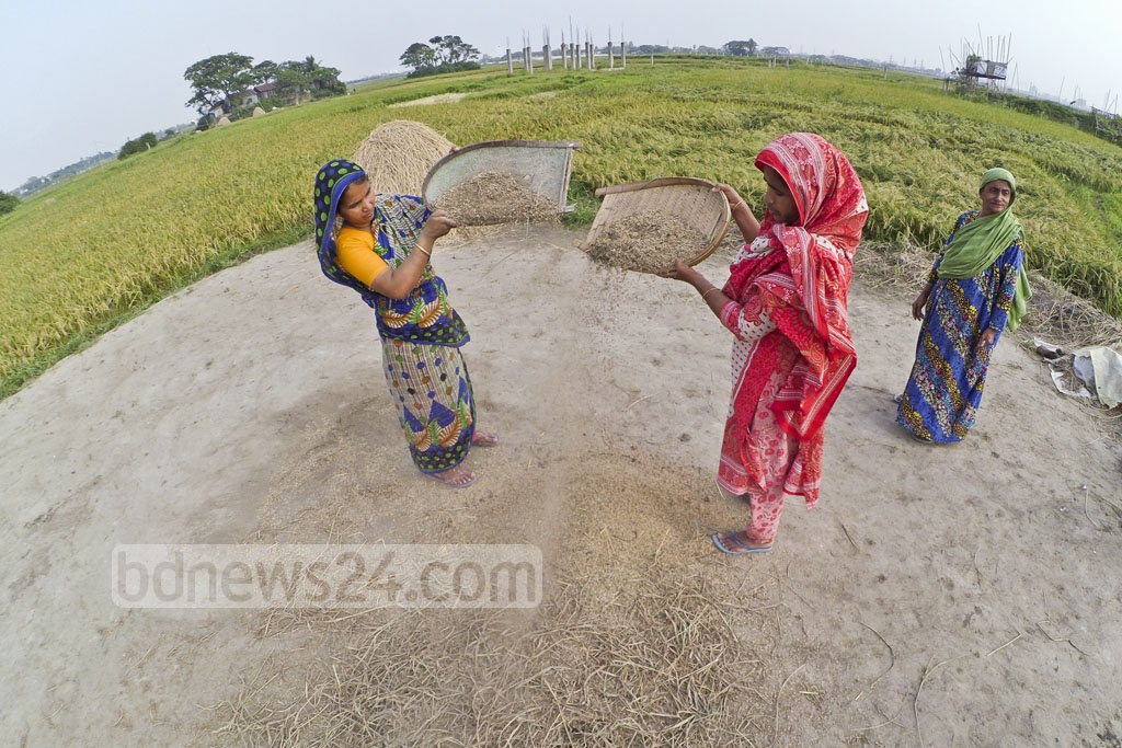 Women husk rice grains in a Demra village. Photo: asif mahmud ove