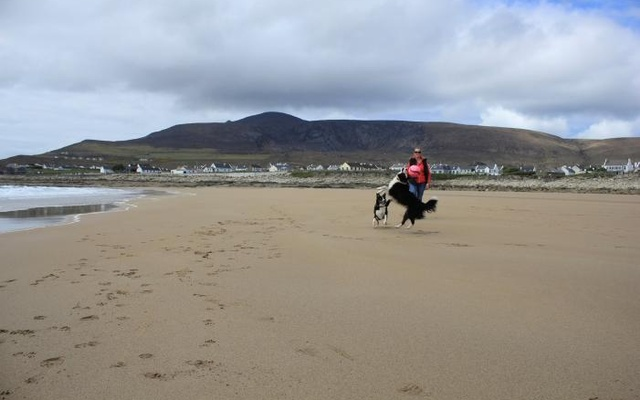 A woman walks her dogs along Dooagh beach after a storm returned sand to it, 30 years after another storm had stripped all the sand off the beach, on Achill island, County Mayo, Ireland, May 5, 2017. Picture taken May 5, 2017. Sean Molloy/Achill Tourism Via Reuters