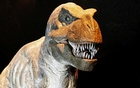 Motor mouth: T rex could bite with the force of three cars