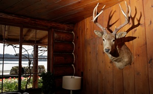 A mounted deer head is pictured as 'Laura's log' is visible through a window at the Kiana Lodge, the filming location of the Great Northern interiors in the 'Twin Peaks' television series, in Poulsbo, Washington, U.S. April 27, 2017. Picture taken April 27, 2017. Reuters