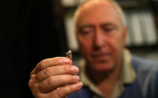 Professor Nikolai Spassov shows a model of an isolated tooth of Graecopithecus freybergi in his office in Bulgaria's National Museum of Natural History in Sofia, Bulgaria May 29, 2017. Reuters