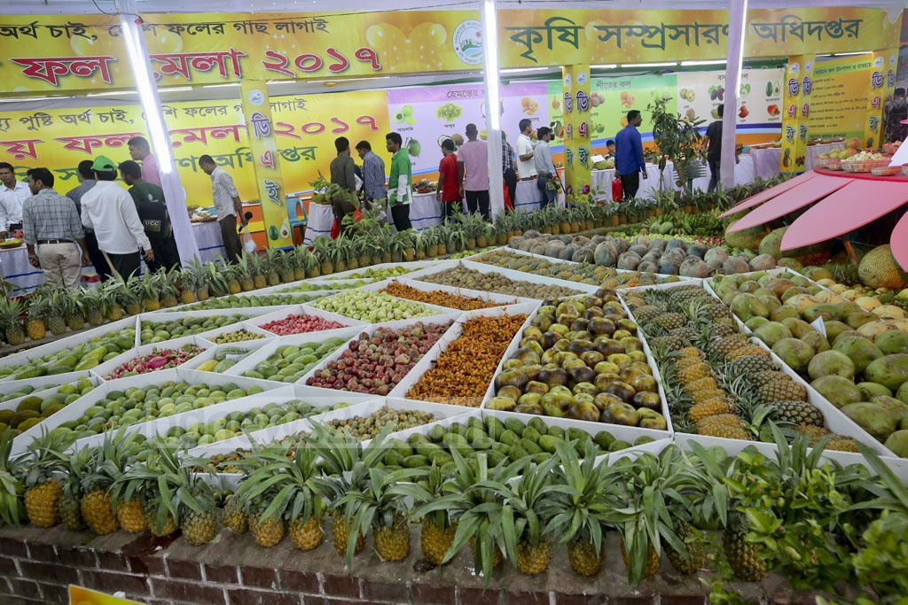 All varieties of mouth-watering summer fruits -- mango, jackfruit, pineapple and more -- are put up on display at Dhaka's National Fruit Fair 2017. Photo: asaduzzaman pramanik