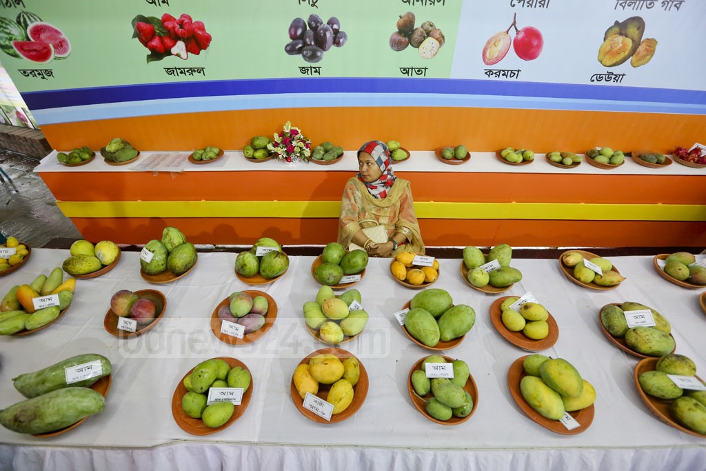 Mangoes, perhaps the most delightful gift of summer, are displayed at the National Fruit Fair 2017. Photo: asaduzzaman pramanik