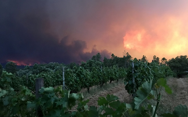 Smoke rises from a forest fire, seen from the village of Mourisco in central Portugal, June 17, 2017. Reuters