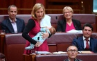 In May, Larissa Waters had made headlines when she became the first woman to breastfeed in the Federal Parliament. Reuters