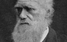 Charles Darwin in an undated photo. Reuters