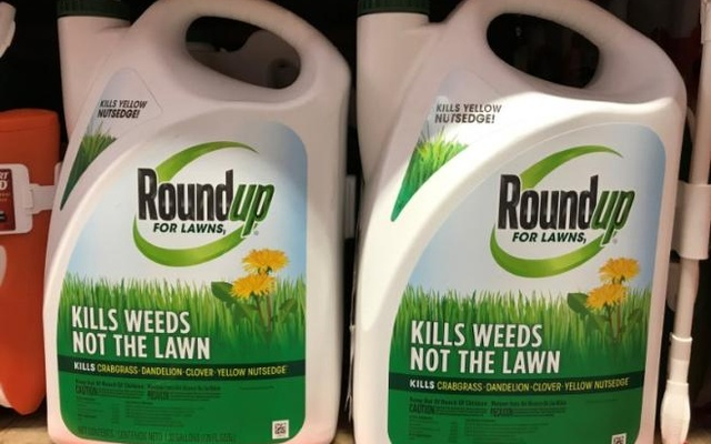 Monsanto Co's Roundup is shown for sale in Encinitas, California, US, Jun 26, 2017. Reuters